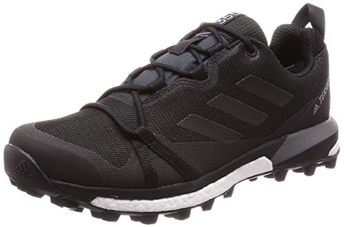 adidas Herren Terrex Skychaser LT GTX Cross-Trainer, Schwarz (Carbon/Core Black/Grey Four F17 Carbon/Core Black/Grey Four F17), 44 2/3 EU