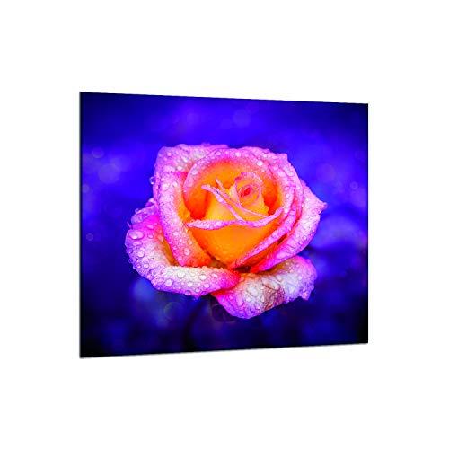decorwelt   designersgroup Protector antisalpicaduras de cristal 65x 60cm pared–Horno fregadero cocina contra salpicaduras Protección baldosas azulejos Espejo Cocina Decoración Cristal Flores Rosa