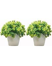 DecoratingLives Set of 2 Mini Cute Artificial Plants Bonsai