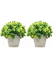 DecoratingLives Set of 2 Mini Cute Artificial Plants Bonsai Potted Plastic Faux Green Grass Fake Topiaries Shrubs for Home Decor, Washroom and Office Decor