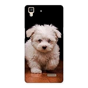 Impressive Cute Walking Dog Back Case Cover for Oppo R7