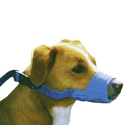 Quick Muzzle, XS, Blue 1