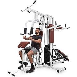 Klarfit Ultimate Gym 9000 estación de Entrenamiento: paralelas, Banco declinado, Escalera, Curl, Prensa para Pierna, contractora y jalones (más de 100 Ejercicios para 2 Personas, MAX. 150kg) Blanco