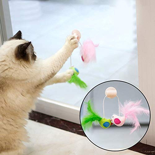 Cat Toys - Funny Cat Toys Interactive Bird Design Toy Teaser Wand Window Sucker Plastic Feather - Sellers Feathers Green Jingle Active Organic Krinkle Puzzle Remote Spring Door Kids Feathe