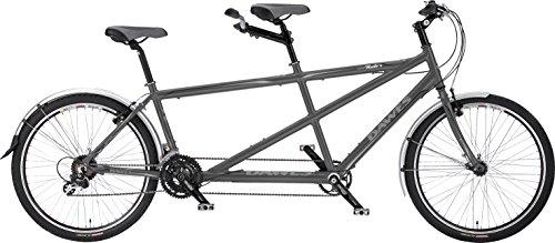 Dawes Discovery Twin 19/38,1cm Tandem Bike 2018 (Fahrrad Velo Griff-rack)