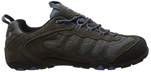 Hi-Tec Windermere Low Wp, Chaussures de Randonnée Basses Homme Gris - Grey (Charcoal/Blue)