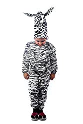 Wild Zebra Fancy dress costume for kids (2-4 yrs)
