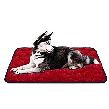 Tapis doux pour chien, Coussin de luxe et durable, Tapis antidérapant et lavable de chien Hero Dog (Rouge, grande taille)
