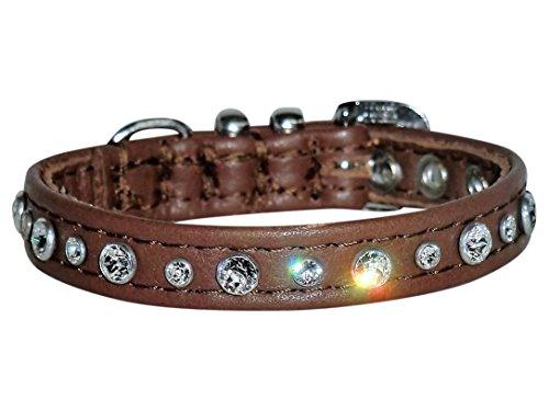Leder-Hunde-Halsband mit Swarovski Elements Strass XS Braun kleiner Hund Chihuahua
