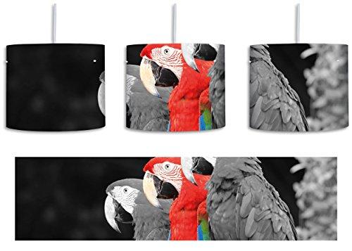 prächtige Papageien auf Ast schwarz/weiß inkl. Lampenfassung E27, Lampe mit Motivdruck, tolle Deckenlampe, Hängelampe, Pendelleuchte - Durchmesser 30cm - Dekoration mit Licht ideal für Wohnzimmer, Kinderzimmer, (Feder Exotische Flügel)
