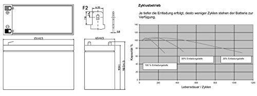 Akku kompatibel Elektromobil E-Scooter Invacare Elektra 24V 2x 12V 9,5Ah AGM