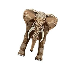 "X Kites skyzoo Elefante Cometa, 40"""