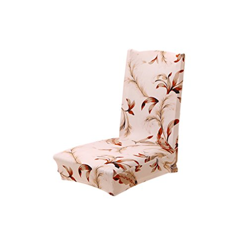 Imported Dining Chair Cover Chair Protector Stretch Slipcover Home Decor 9 Types - brown , 2 x 3  available at amazon for Rs.445