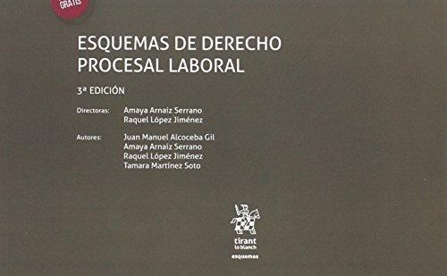 Tomo IV Esquemas de Derecho Procesal Laboral 3ª Edición por Tamara Martínez Soto