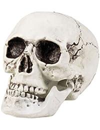 Crâne de décoration, pour décorer votre maison, salle ou table de fête d'Halloween Ce crâne de squelette effraiera vos invites Ne privez pas vos convives de cette occasion de rire ou de frissonner d'effroi, choisir:Crâne en plastique blanc 74362