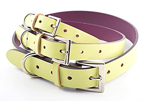 Ancol Indulgence Lime Leather Dog Collar (Size 4-5 21