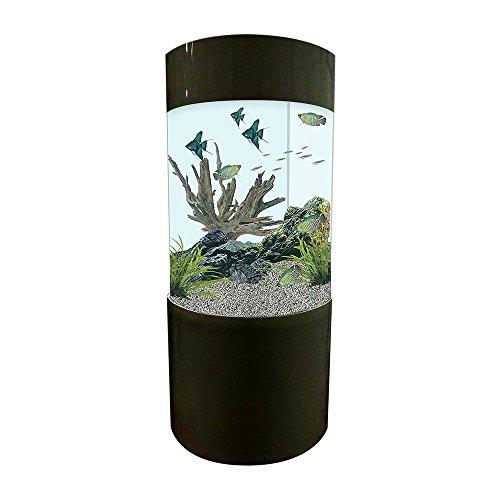 Zylinderförmiges Aquarium, Säule