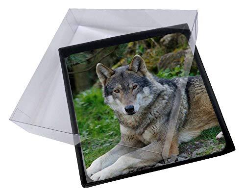 Advanta - Coaster Set 4X EIN herrliches Wolf Bild Setzer gesetzt Wolf Coaster Set