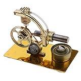 B Blesiya Stirlingmotor Stirling Motor Maschine mit Zubehör Bausatz