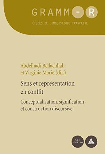 Sens Et Représentation En Conflit: Conceptualisation, Signification Et Construction Discursive (Gramm-R. Etudes de Linguistique Francaise)