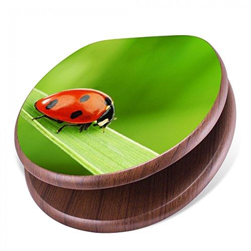 banjado Design Toilettensitz mit Absenkautomatik, WC-Sitz Holz, Klodeckel mit Metall Scharnieren, Toilettendeckel mit Motiv Marienkäfer