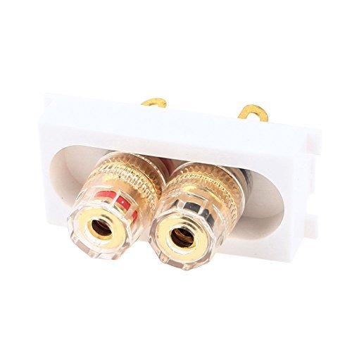 HiFi luidspreker Dubbele 4mm Banana Jack binding post Module Wall Panel Plate -