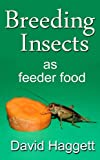 Breeding Insects as feeder food (English Edition)