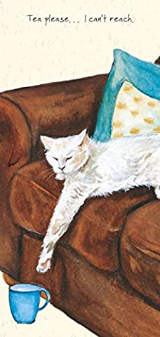 Pearl the Lazy White Cat funny BLANK greeting card -