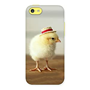 Cute Hat Chik Back Case Cover for iPhone 5C