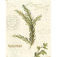Aromantique II di Audit, Lisa, Stampa Giclée su tela in carta e decorazioni disponibili, Tela, SMALL (8 x 10 Inches )