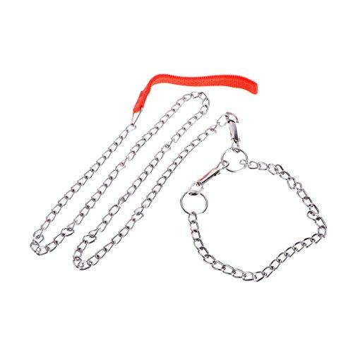 Kimyu Haustier Hund Metall Eisen Kette Traktion Seil Walking Training Blei Leine Kragen (Silber-katze-kragen)