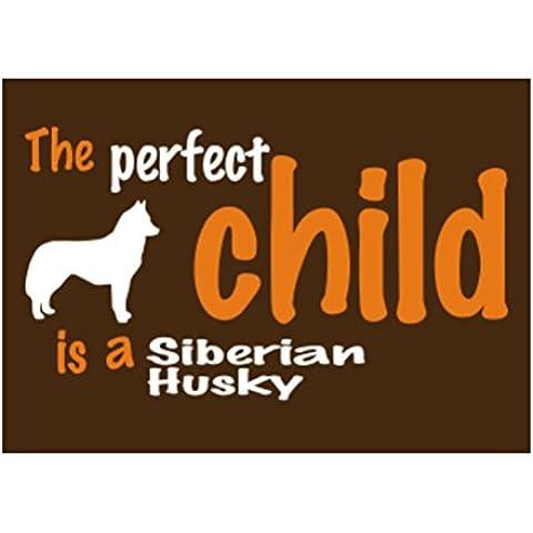Teeburon THE PERFECT CHILD IS A Siberian Husky Sticker Pacchetto di 4 - Siberian Husky Adesivo