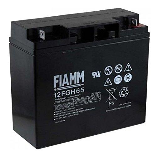 FIAMM Hochstrom Bleiakku 12FGH65 (FGH21803) 12,0Volt 18.000mAh mit M5 Schraubanschluss