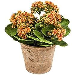 artplants Künstliche Kalanchoe FAJRA mit Blüten, orange, 22 cm - Deko Blume/Kunst Pflanze