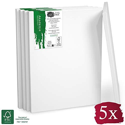 Artina - Châssis entoilé certifié FSC® - Toile à Peindre - Akademie - Qualité Fine - Apprêtée 2 Fois - Lot de 5-20x30cm - 280g/m²