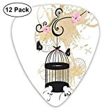 Guitar Picks 12-Pack,Illustration With Stained Background And Monochrome Birdcage Butterflies