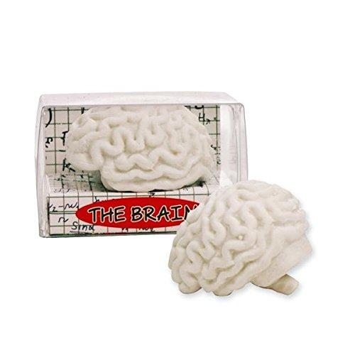 Trendhaus trendhaus938480Radierer der Brain Radierer (Radiergummis Iwako Alle)