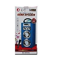 pluetooth portable speaker Fm radio, usb mp3/mp4/usb/SD/BT player,remote,kalaoke