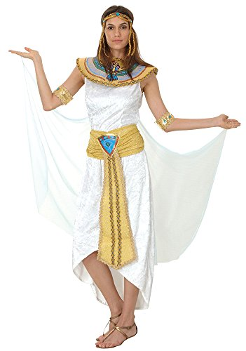 Bristol Novelty AC476 Queen of Nile Kostüm (UK 10–14) (Egyptian Fancy Dress Ideen)