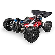 Coche Rc Buggy Dingo Remo 1:16 | Tracción 4x4 | 40 km/h | 15 Minutos | Tienda Hobby Juguetes Baratos Niños