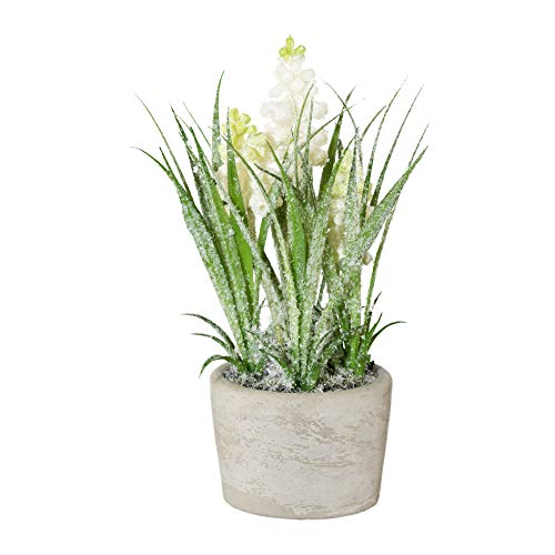 wohnfuehlidee Kunstpflanze Muscari geeist, 2er Set, Farbe weiß, inklusive Zementtopf, Höhe ca. 20 cm