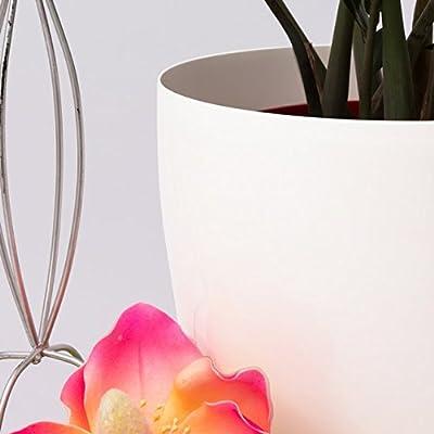 19 Liter Blumentopf Übertopf Coubi Serie weiss ø 350 mm Glanz PP Kunststoff Rollen Vorbereitung von Prosperplast - Du und dein Garten