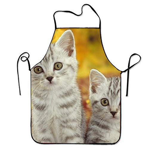Estrange Autumn Halloween Black Cat Kitten Aprons for Men Bib Apron
