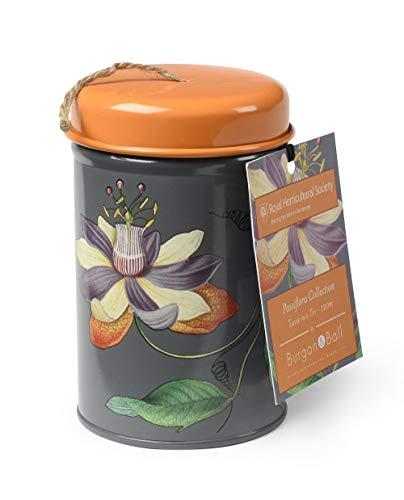 NEW Passiflora Ficelle dans une boîte métallique