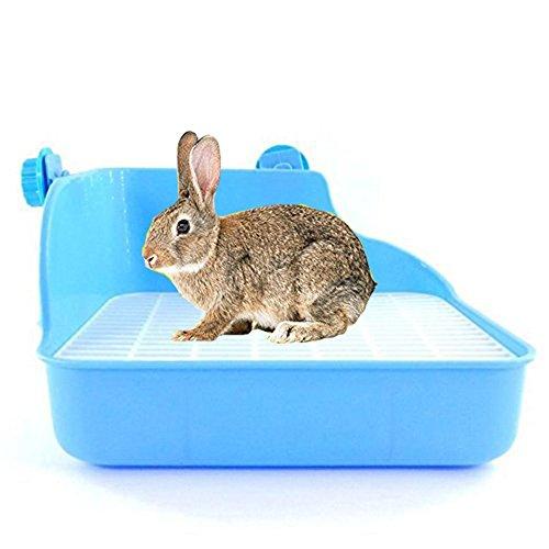 Toilettes propre Wicemonon pour animal domestique,...