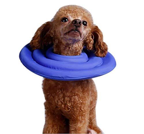 DAN Halskrause Halskragen Schutzkragen Für Hund & Katze Anti-Biss/Anti-Lecken-Schaumstoff Innen, Weich, Super Leicht Und Langlebig,XL