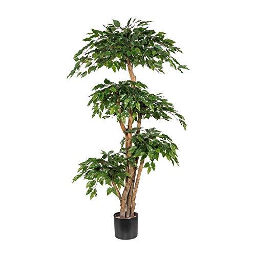 wohnfuehlidee Kunstpflanze Ficus Benjamini grün, mit Naturstamm, im Topf, Höhe ca. 170 cm