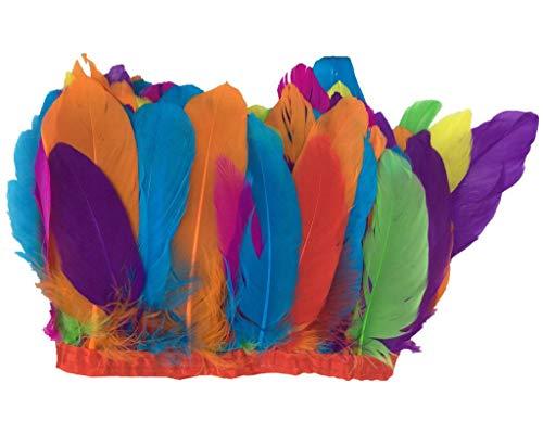ERGEOB Ente Feder Stoffstreifen 2 Meter - Ideen für die Bekleidung, Kostüme, Hüte. bunt (Bunte Kostüme Ideen)