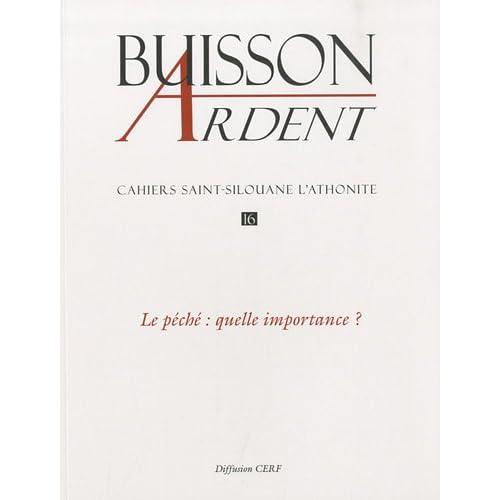 Cahiers Saint-Silouane l'Athonite, N° 16 : Le péché : quelle importance ?