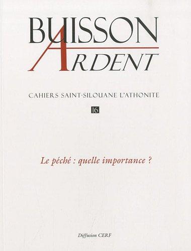 Cahiers Saint-Silouane l'Athonite, N° 16 : Le péché : quelle importance ? par Archimandrite Sophrony